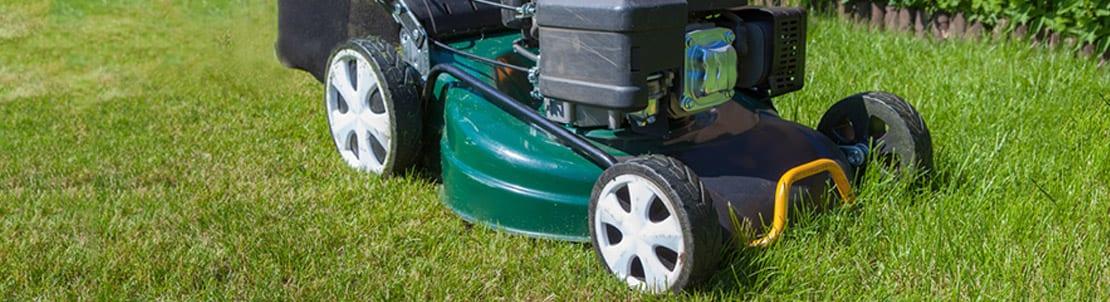 Grass Cutting Services Chelmsford