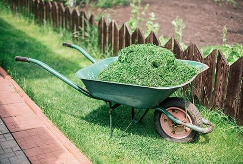 Grass Cuttings Disposed Of